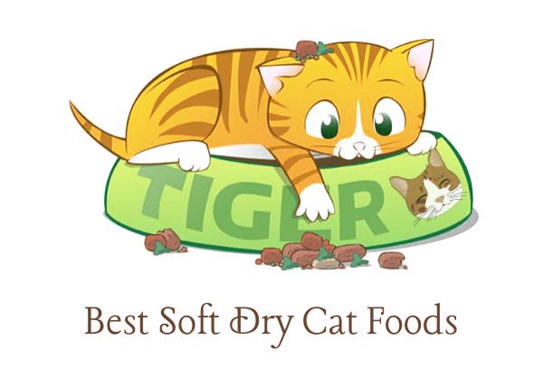 Best Soft Dry Cat Foods