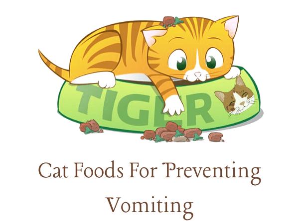 Cat Foods For Preventing Vomiting